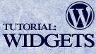 Using Widgets in WordPress